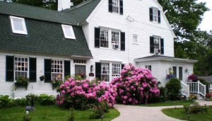 spring-at-the-waldo-emerson