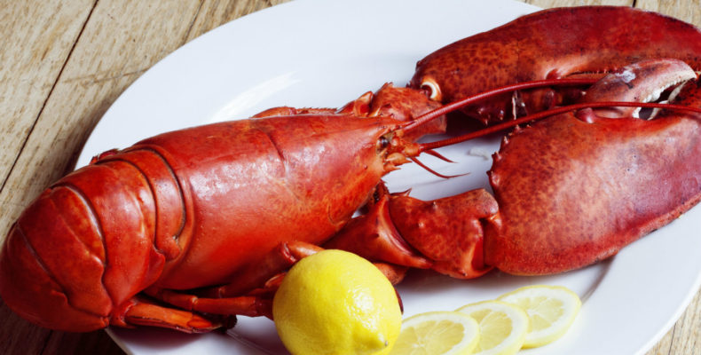 Lobster and lemon on a plate