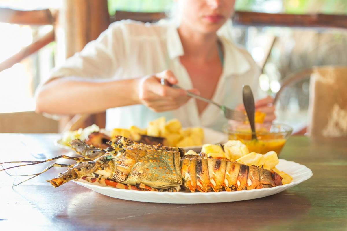 Maine Lobster Season