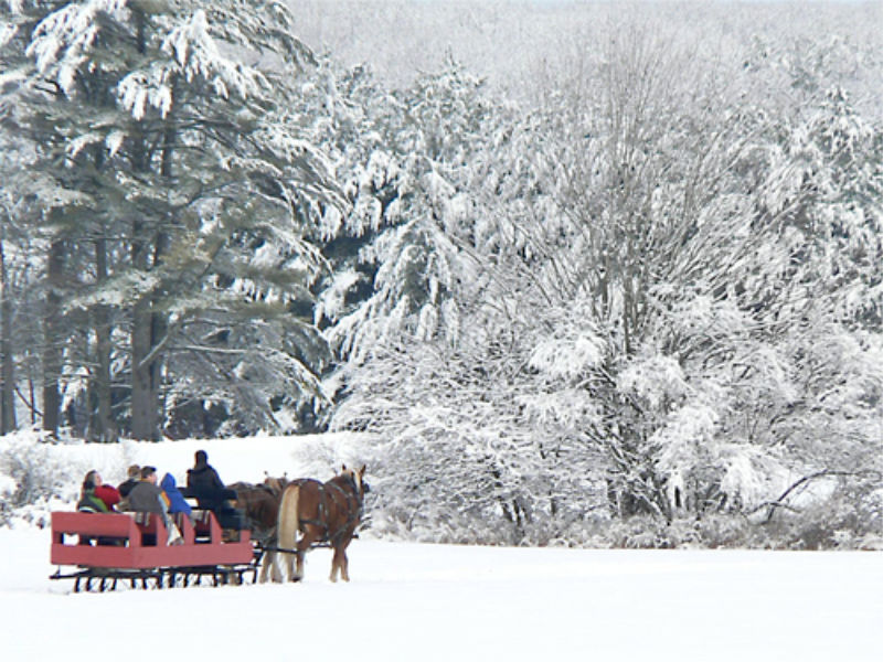 Sleigh Ride in Maine